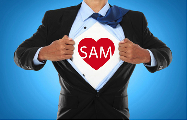 Be a SAM Superhero | Using the Successive Approximation Model