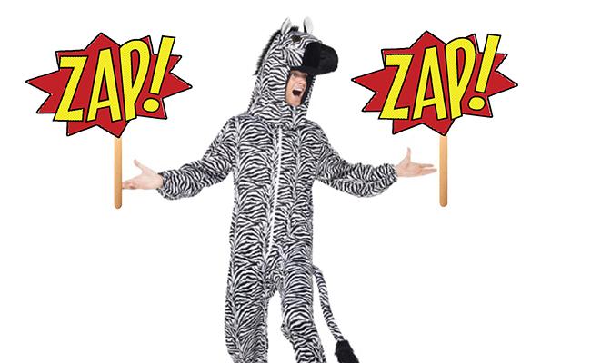 ZebraZapps-3
