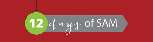 12_Days_of_SAM