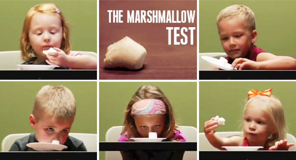 marshmallow-test.jpg