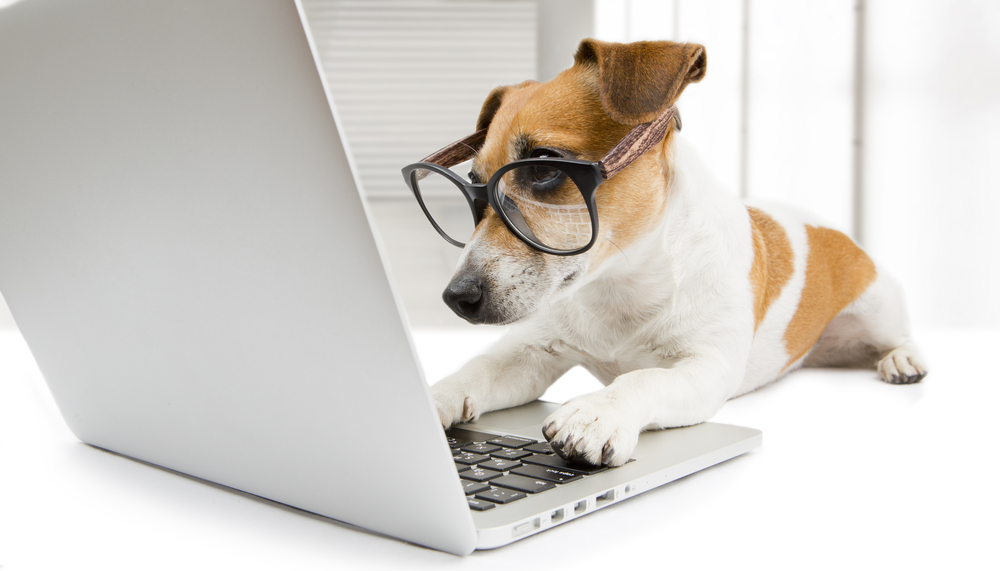 elearning_lessons_from_dogs_blog_.png